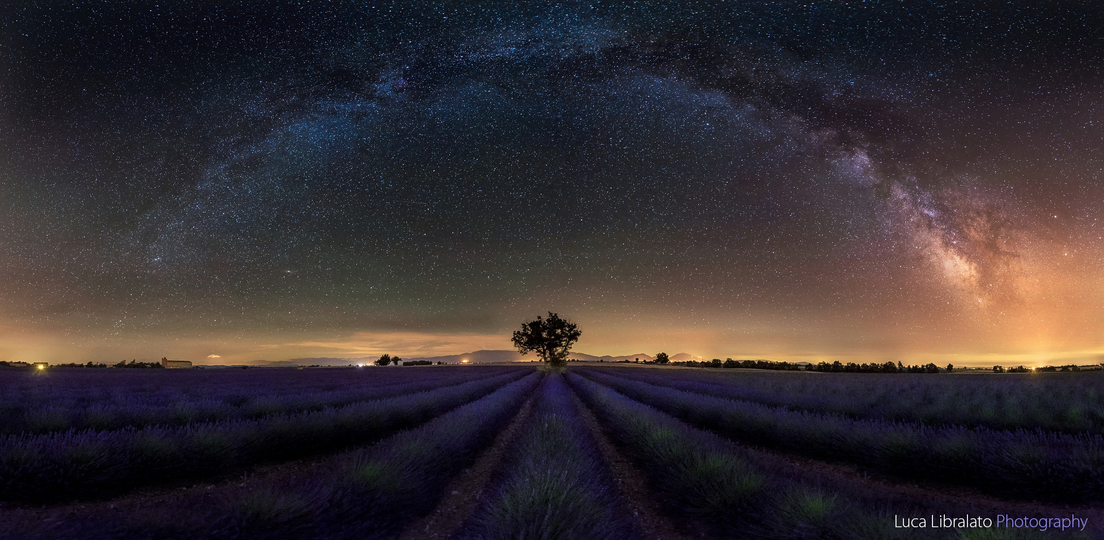 Stars And Stripes (Valensole - Provence)