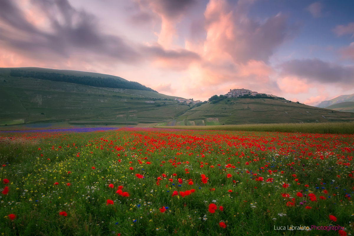 Sunset In Castelluccio