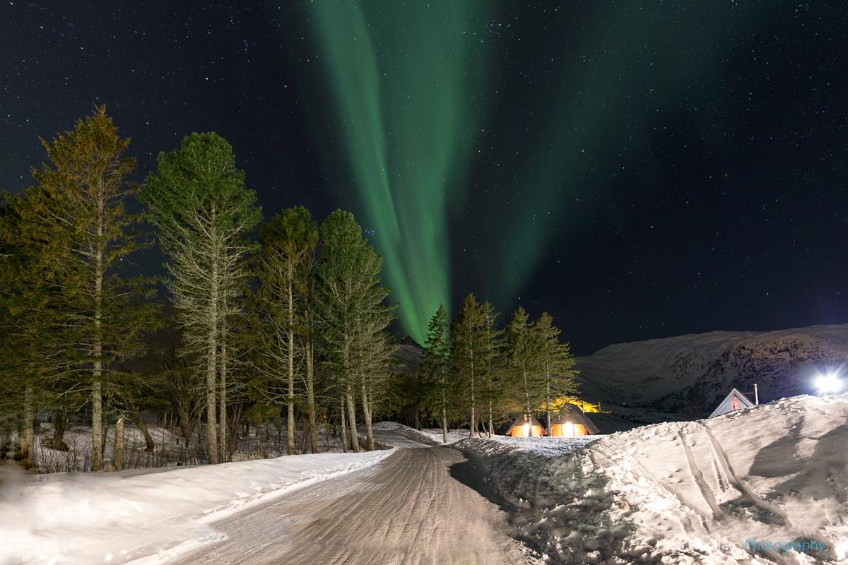 Skiing Under Northern Lights