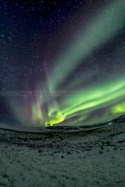 Northern Lights - Purple Hue