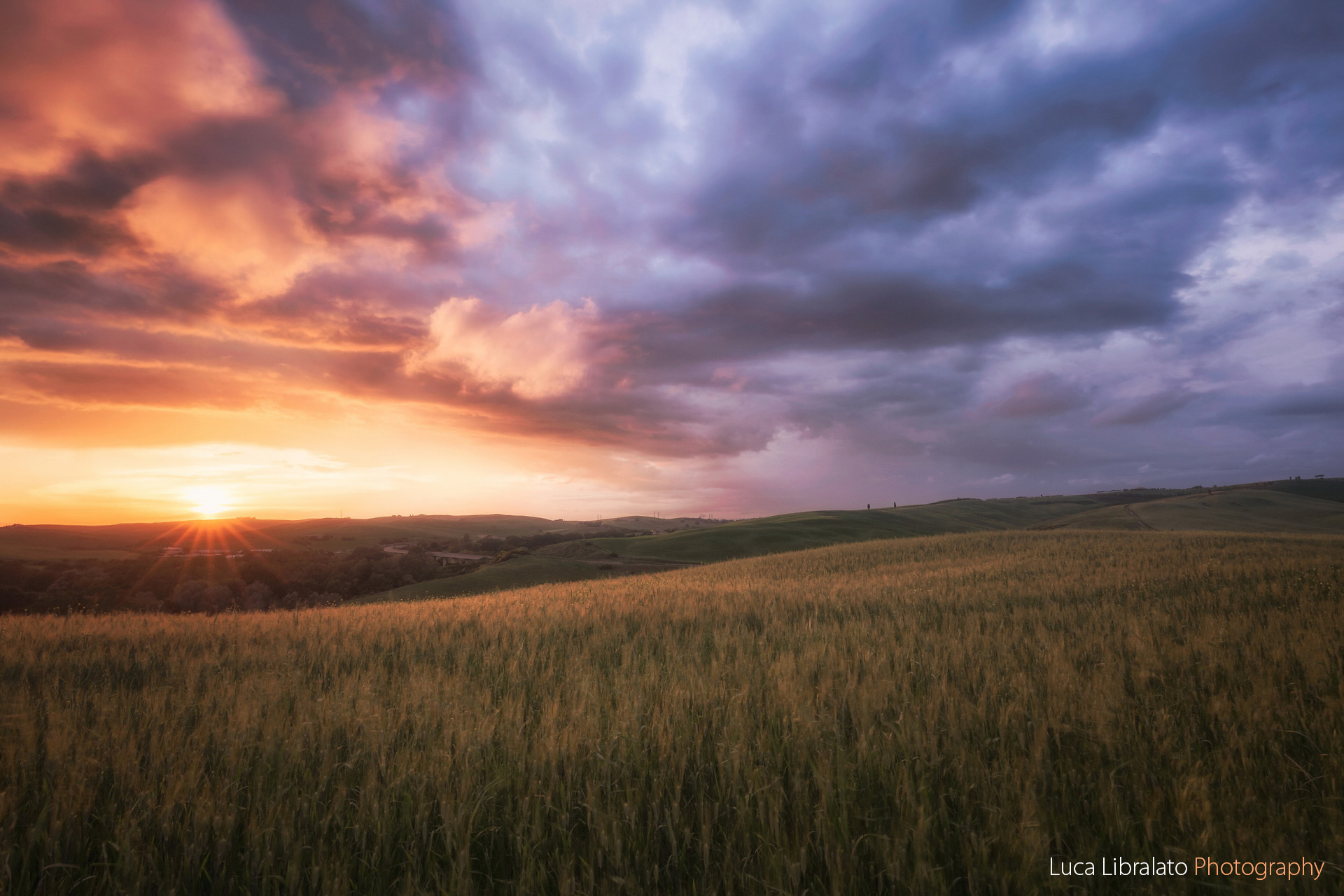 Golden Sunset (Tuscany)
